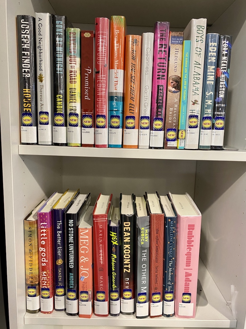Photograph of library books on two shelves