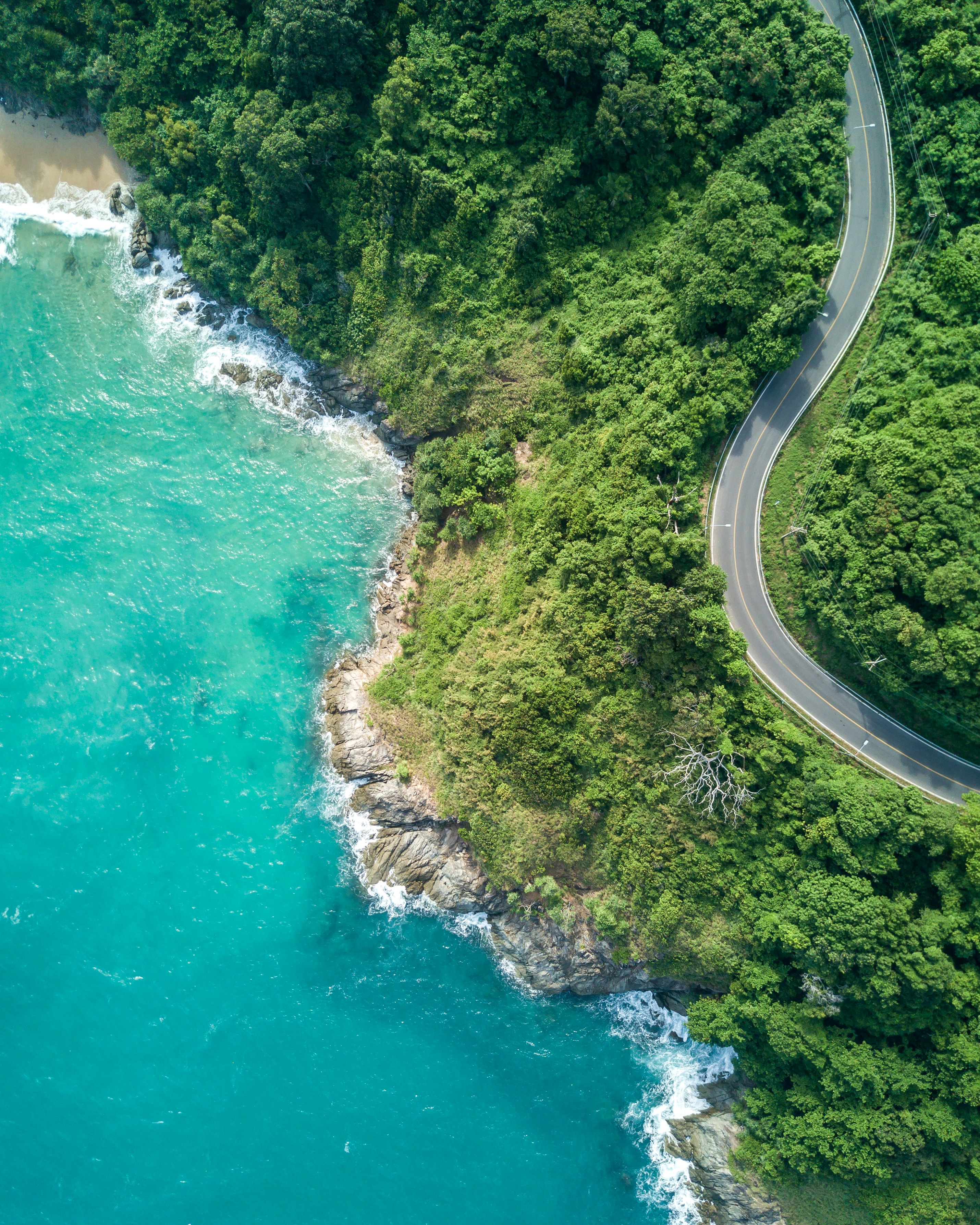 Photo depicts a winding road through lush green forest by a tropical body of water